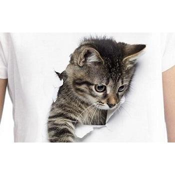 3D Shirts