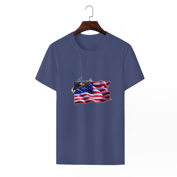 Flag Soaring Eagle Custom Men's Crew-Neckone T-shirt